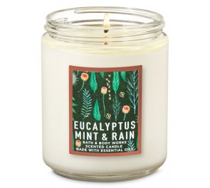 Парфюмированная свеча Bath & Body Works Single Wick Candle - EUCALYPTUS MINT & RAIN