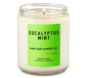 Парфюмированная свеча Bath & Body Works Single Wick Candle - EUCALYPTUS MINT